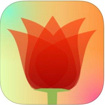效果出色!淺景深、移軸鏡效果一套 App 實現!