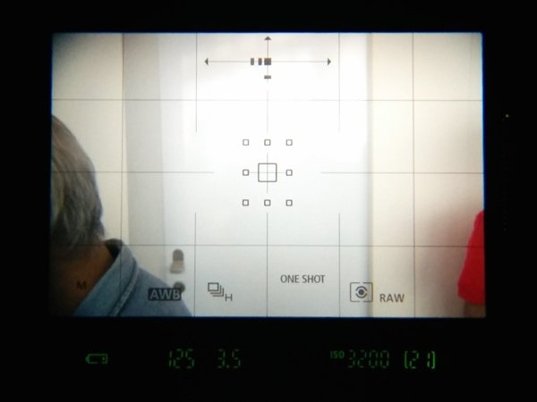 ▲新對屏可以顯示出更多資訊,如上方是顯示相機水平、垂直情況,下方有不同的拍攝功能資訊,加上轉盤、選擇桿等,令用家眼睛不用離開觀景器亦可更改拍攝設定。