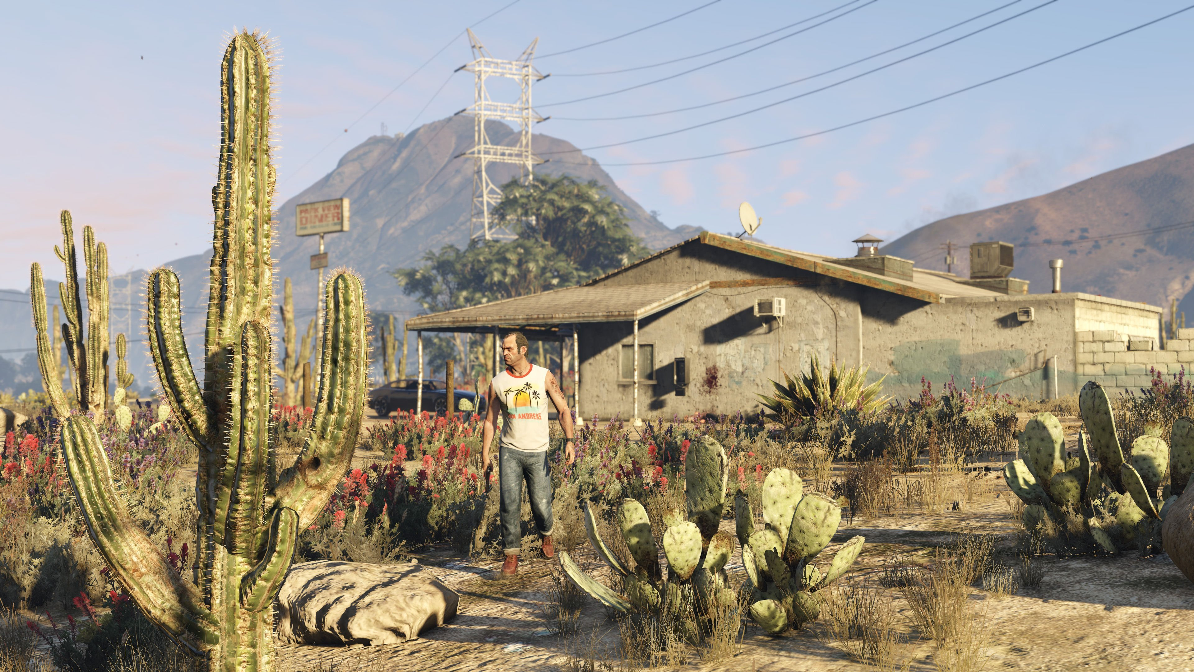Screens from Grand Theft Auto V for PC-8