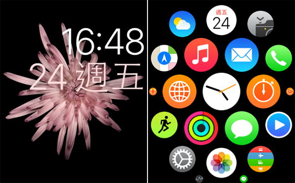 apple-watch-screenshot_03