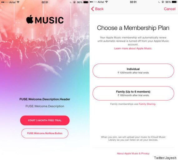 apple-music-lower-budget_03