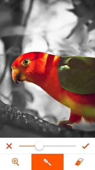 phoenix-photo-editor-3