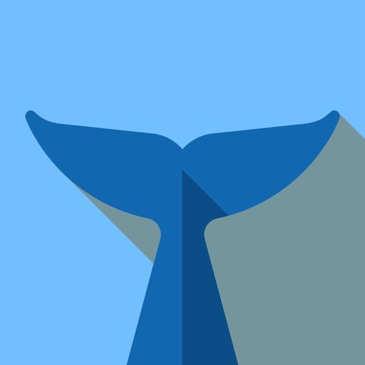 flipper-mirror-icon