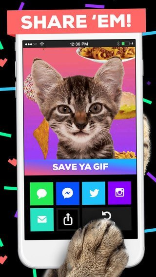 giphy-cam-3