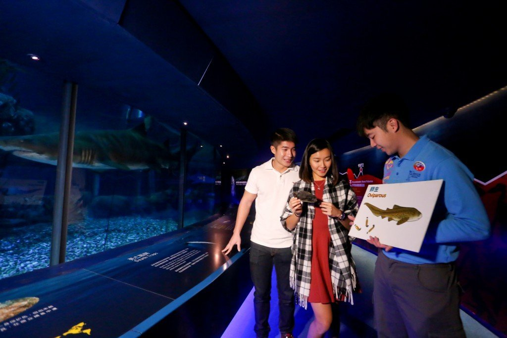 Ocean Park 2016 Valentine's Day Packages - Nighttime in the Ocean's Depths – Special Edition 1