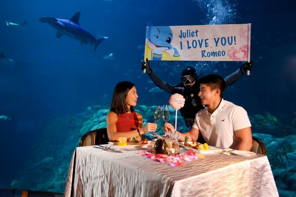 Ocean Park 2016 Valentine's Day Packages - Premium Valentine's Day Package 1