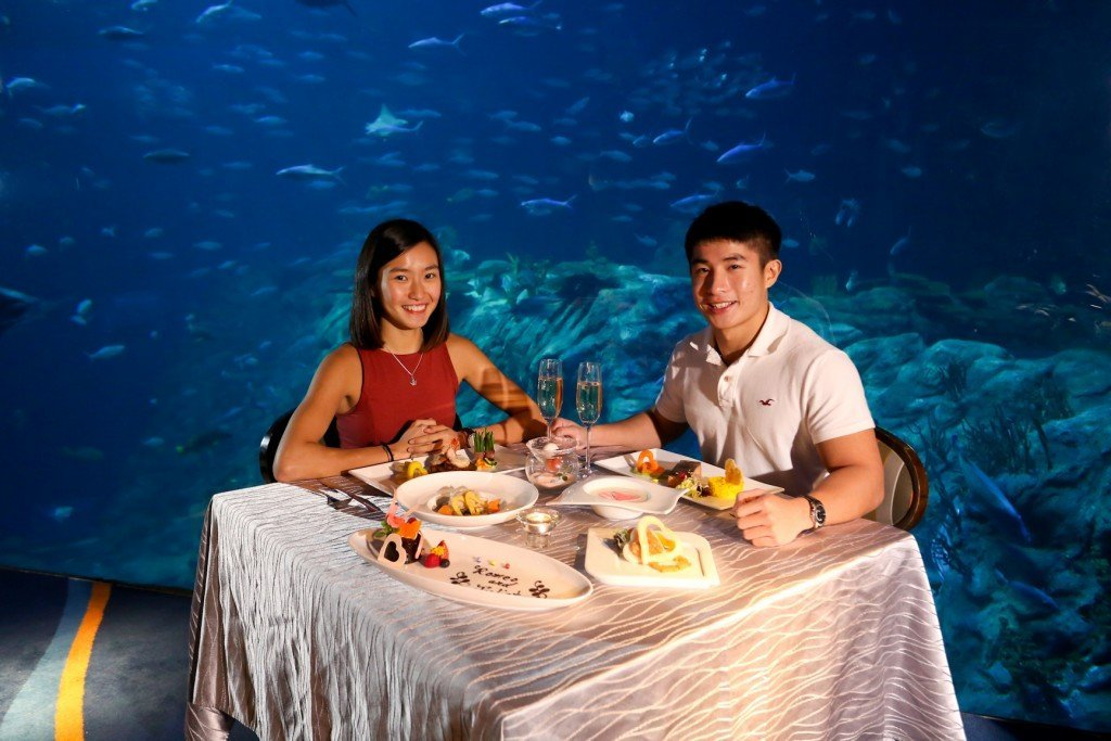 Ocean Park 2016 Valentine's Day Packages - Valentine's Day Set Dinner Plus Admission Package 1