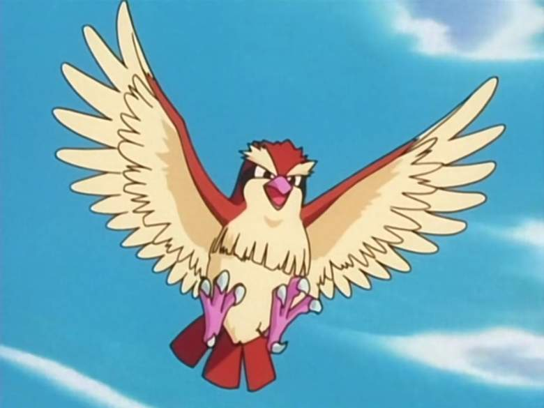 10-pokemon-which-can-be-easily-catch_13_ Pidgey