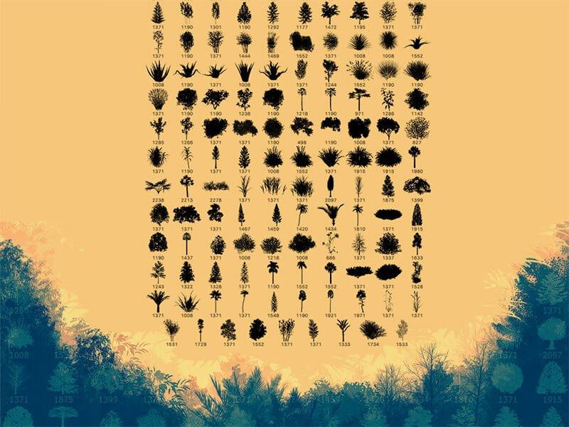139-plant-brushes