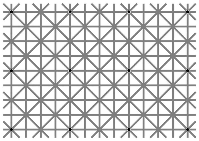 do-you-saw-12-black-dots-in-this-picture_00